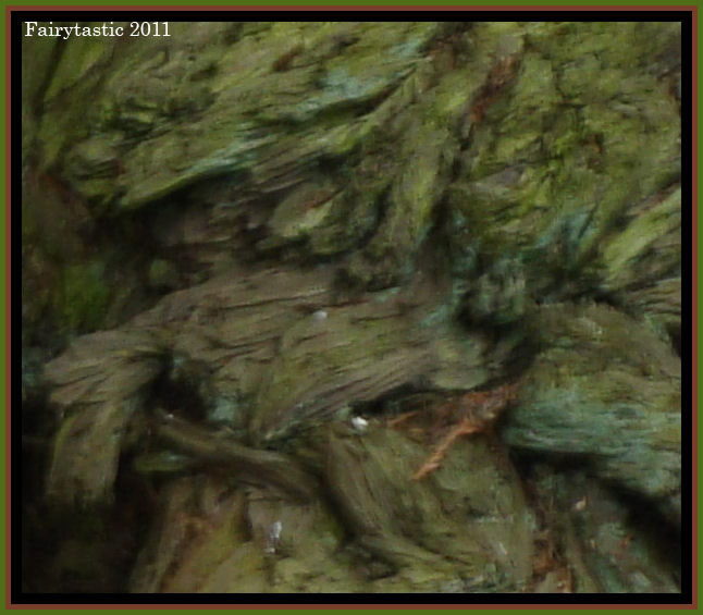 Tree elementals found in tree bark, spirits of trees