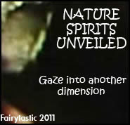 Nature spirits unveiled, beyond the veil